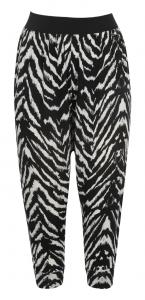 Haremsbyxa zebra